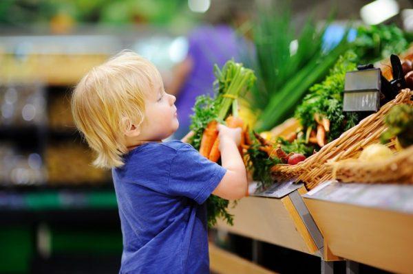 The Double-Edged Sword of GMOs