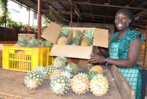Is Uganda ready for GMOs?