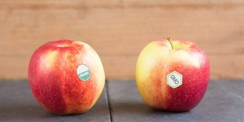 GMO Expert Voices Concerns About Engineered Foods