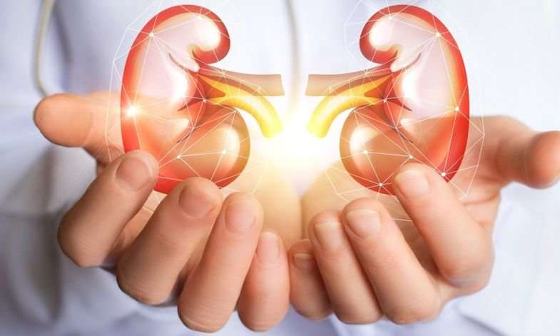 CKD: How This Diet Can Help In Managing Kidney Diseases