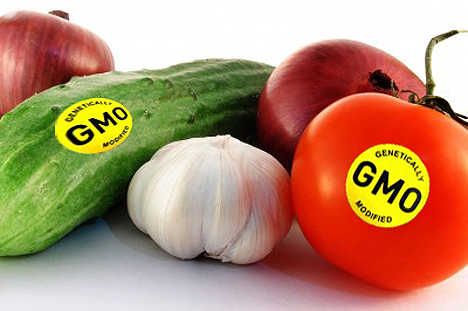 Are Genetically Modified Foods (GMOs) Safe?