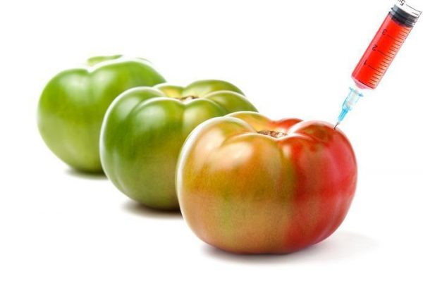 Are You Scared of GMO Foods?
