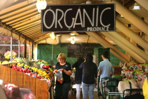 Is organic food really better for you? The hidden truths about your fruit and veggies